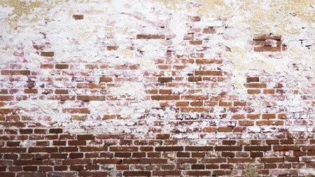 Kalkablagerungen auf einer Ziegelsteinmauer.